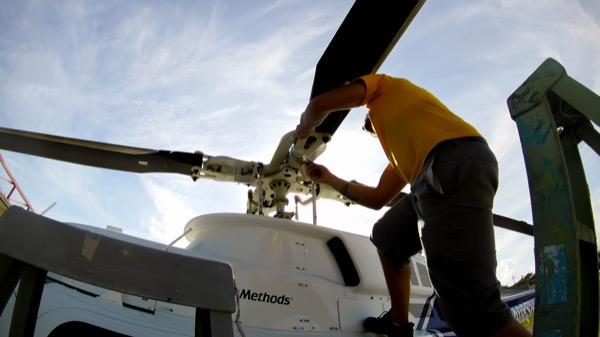 maintenance work, painting/branding or avionics